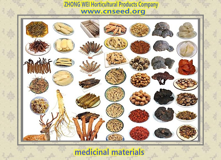ZHONG WEI Horticultural Products Company(Medicine Catalogues)