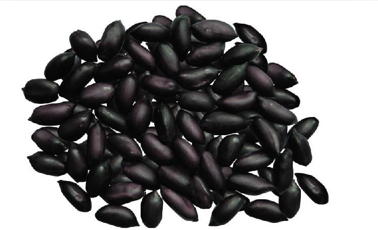 Black Peanut seed