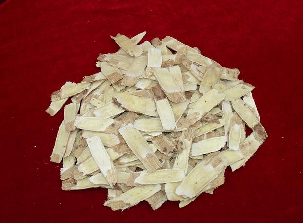Radix Angelicae sinensis root slices angelica root  dang gui Lovage
